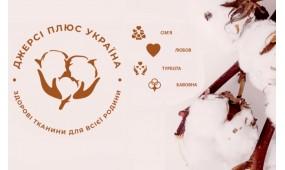 Упровадження Діджиталізації в українській легкій промисловості