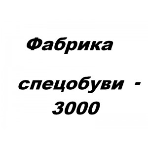 Фабрика спецобуви - 3000, ЧП