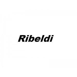 Ribeldi - Оборудование для производства обуви и кожгалантереи